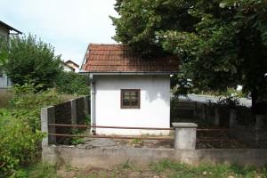 IMG 7102